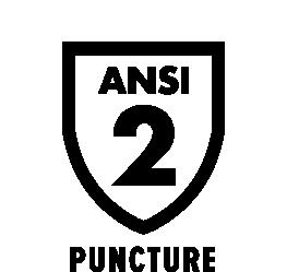 Comp ANSI Puncture 2
