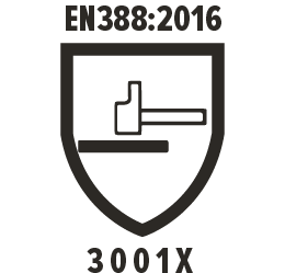 EN388:2016 3001X Pictogram